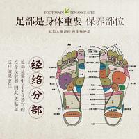 形象美温和舒缓足贴 去疲劳改善睡眠轻薄贴服足膜贴 足部护理